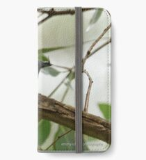 Leaden Flycatcher - 27 iPhone Wallet