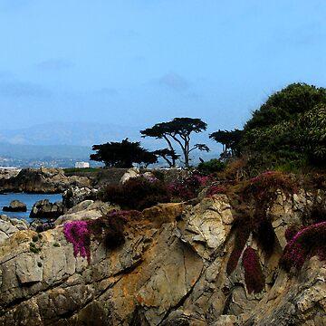 Monterey Beach by kellerman