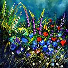 Garden flowers by calimero