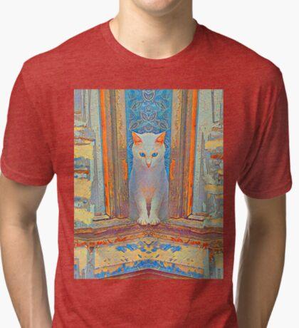Symmetrical cat Tri-blend T-Shirt