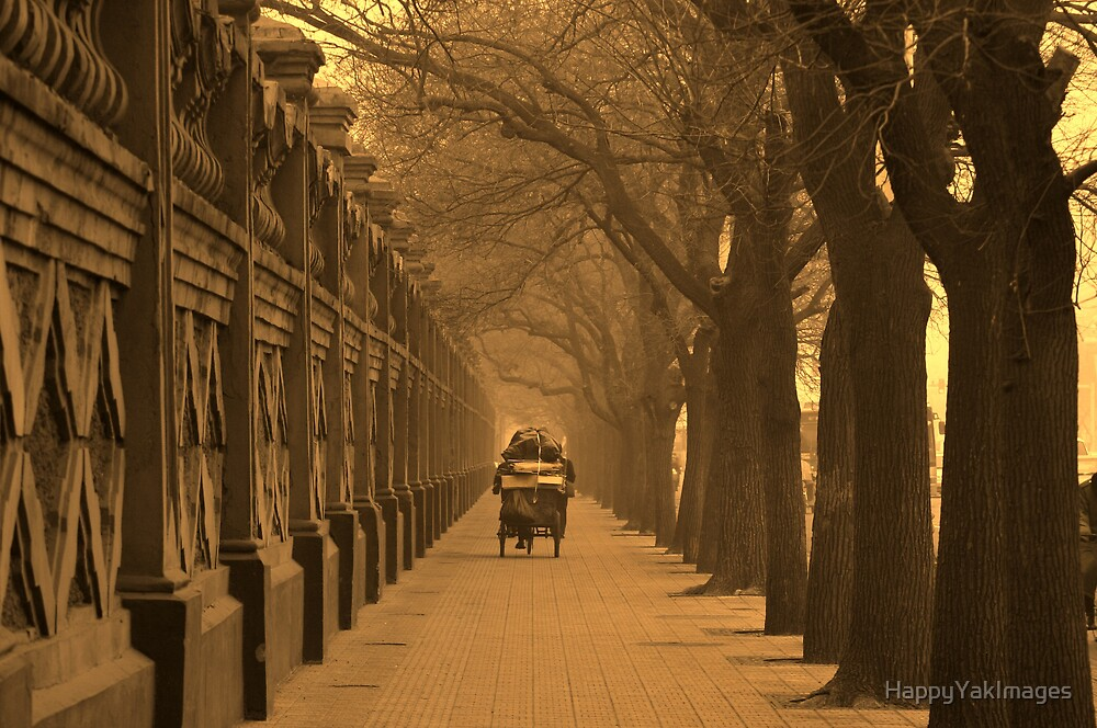 Old Beijing by HappyYakImages