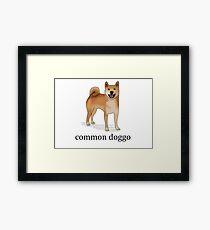 Common Doggo Framed Print