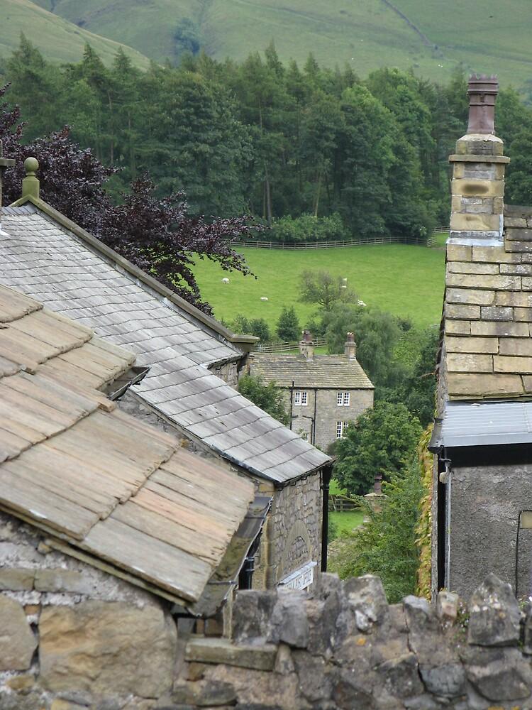Rooftops at Downham by Maureen Brittain