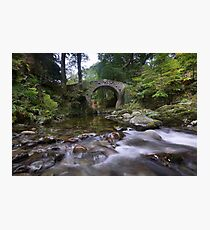 Foley's Bridge, Tollymore Forest Park, Co Down, Northern Ireland Photographic Print