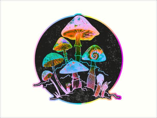 Garten von Shrooms 2020 von Daniel Watts