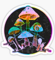Garden of Shrooms 2020 Sticker