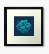 Aquatic Spectrum Framed Print