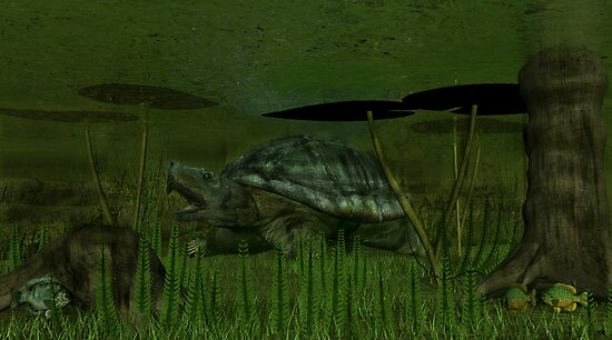 Snapping Turtle by Walter Colvin