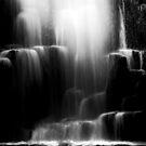 Dip Falls in Tasmania by Imi Koetz