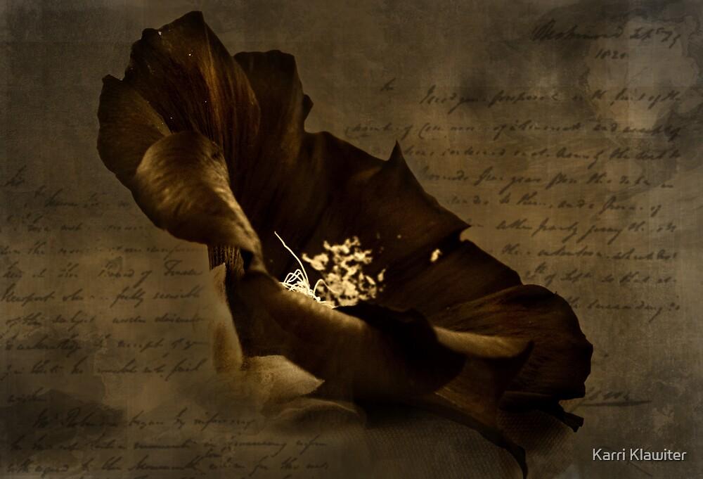 Darkened Hope by Karri Klawiter