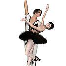 Black Swan Pas De Deux by algoldesigns