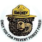 Prevent Fires by Gary Grayson