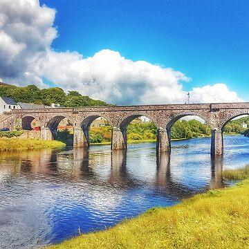 Newport Seven Arches Bridge  by paulmcnam