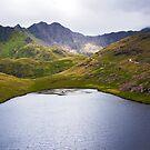 Mountain Lake by Svetlana Sewell