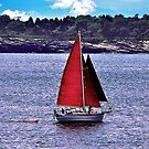 Red Sails Delight ! by Nancy Richard