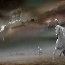 Storm Run by Igor Zenin