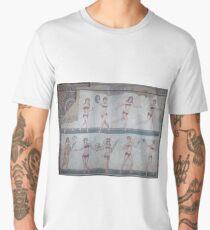 Bikini Girls Mosaic - Villa Romana del Casale Men's Premium T-Shirt