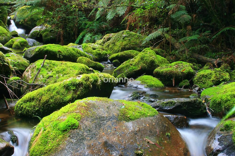 Moss Rocks by orianne