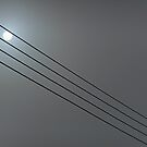 Sun Caught in the Wires by Billlee