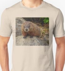 Groundhog Looking Down T-Shirt