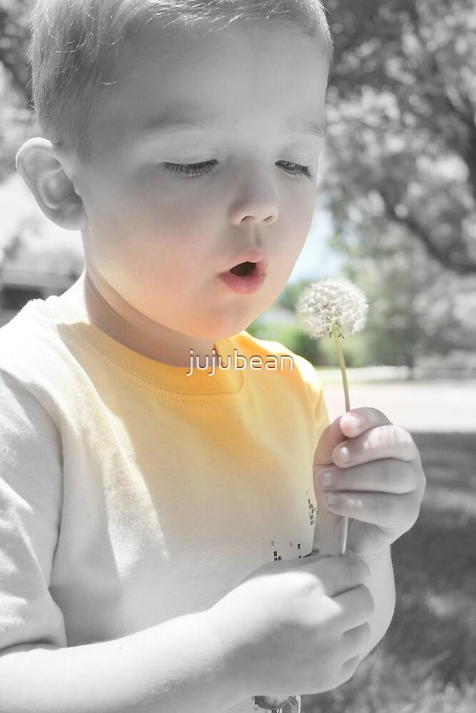 Make A Wish by jujubean