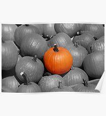 Perfect Pumpkin Poster