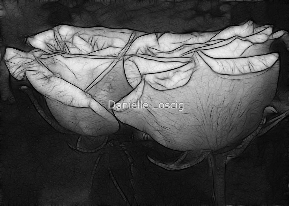 Rose Reflection B&W by Danielle Loscig