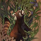 Red Panda Dreams by JDArtist