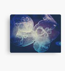Jellyfish Storm Canvas Print