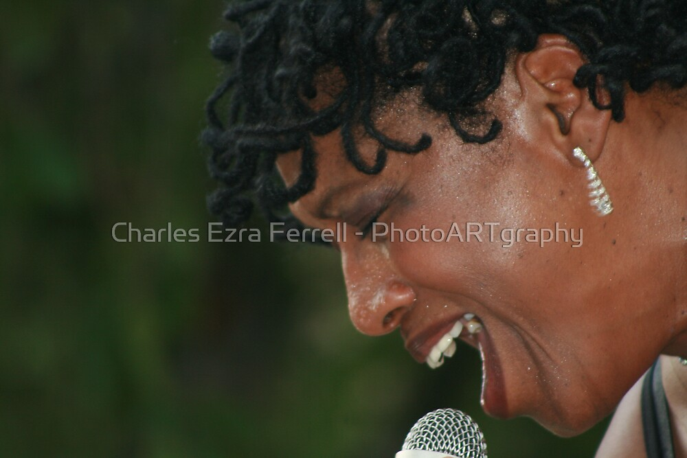 Back In To It by Charles Ezra Ferrell - PhotoARTgraphy