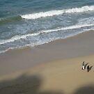 beach walk by andrewcarr