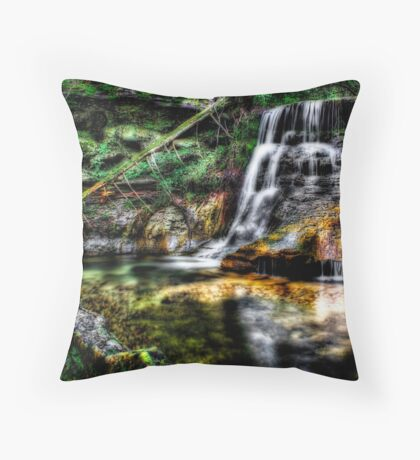 Golden Light Falls Throw Pillow