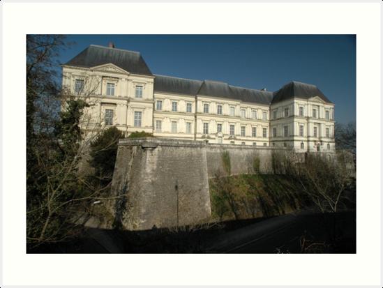 Chateau, Blois, Loire Valley, France, Europe 2012 by muz2142