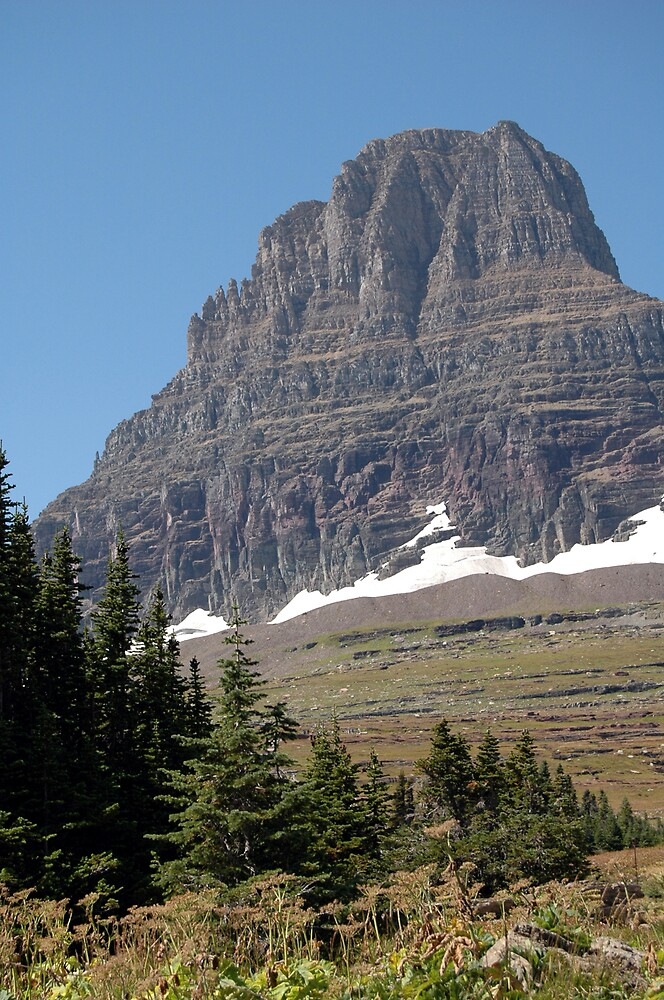 Glacier National Park by BarbsUSA