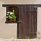 Old Wooden Door and Window by Yair Karelic