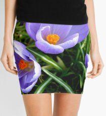 The Crocus Mini Skirt