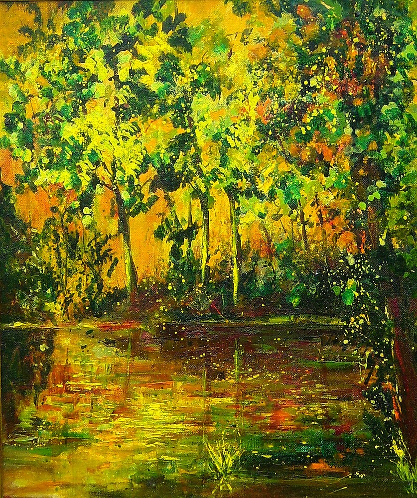 pond in autumn by calimero