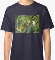 Blue headed honey eater on bird of paradise flower. Classic T-Shirt
