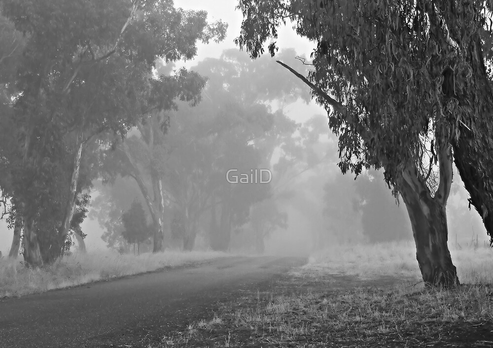 One Foggy Morning by GailD