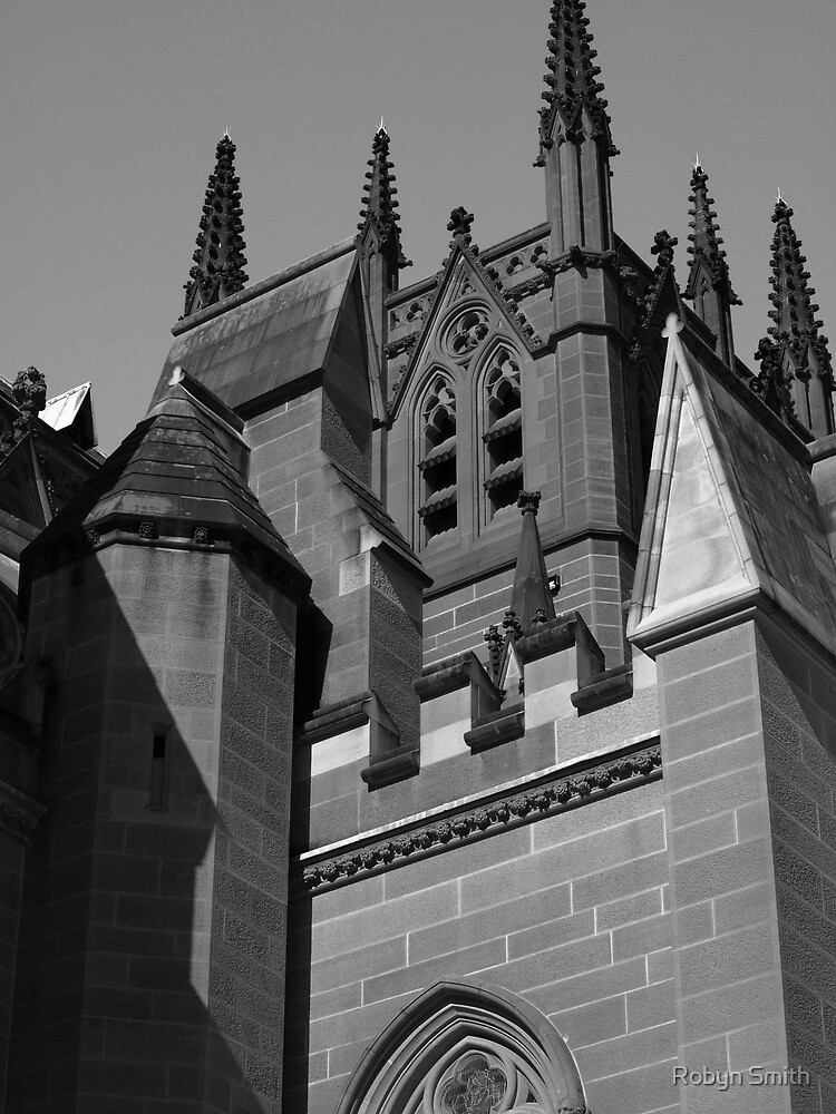 St Mary's Cathedral, Sydney by Robyn Smith