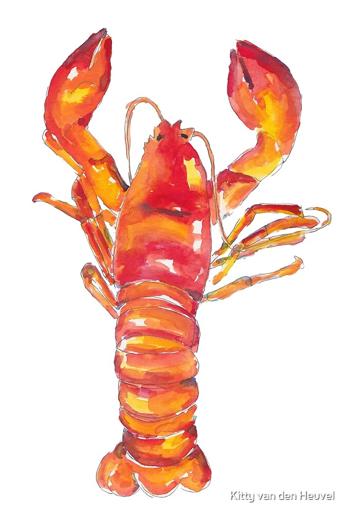 Juicy lobster - food illustration in watercolors by Kitty van den Heuvel
