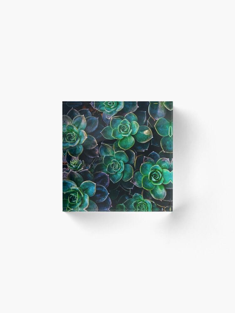 Alternate view of Succulent fantasy Acrylic Block