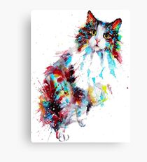 Lovely cat Canvas Print