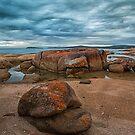 Tasmania Coles Bay by Margaret Metcalfe