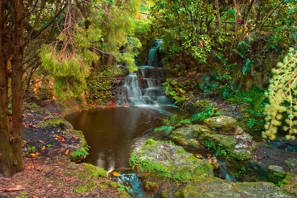 Botanic Golf Gardens, Wanneroo by Claire  Farley