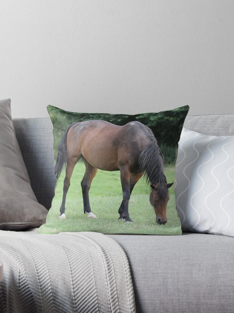 Braunes Pferd von John Williams