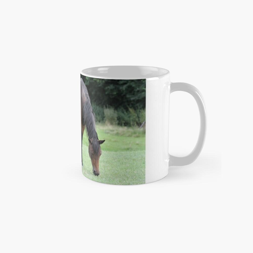 Braunes Pferd Tassen