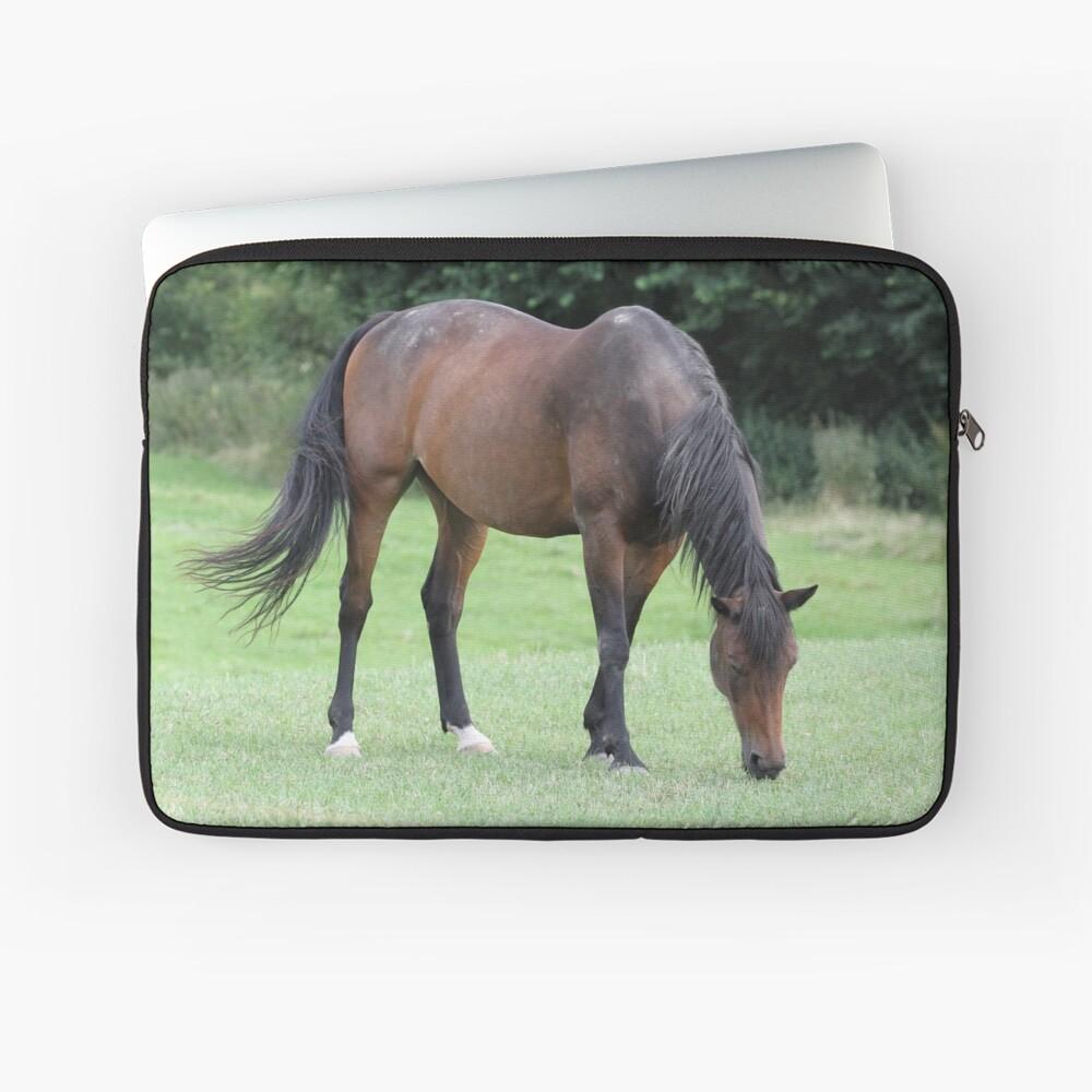 Braunes Pferd Laptoptasche
