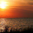 Racing the Sunset by Jonicool