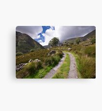 The Black Valley, County Kerry, Ireland Canvas Print